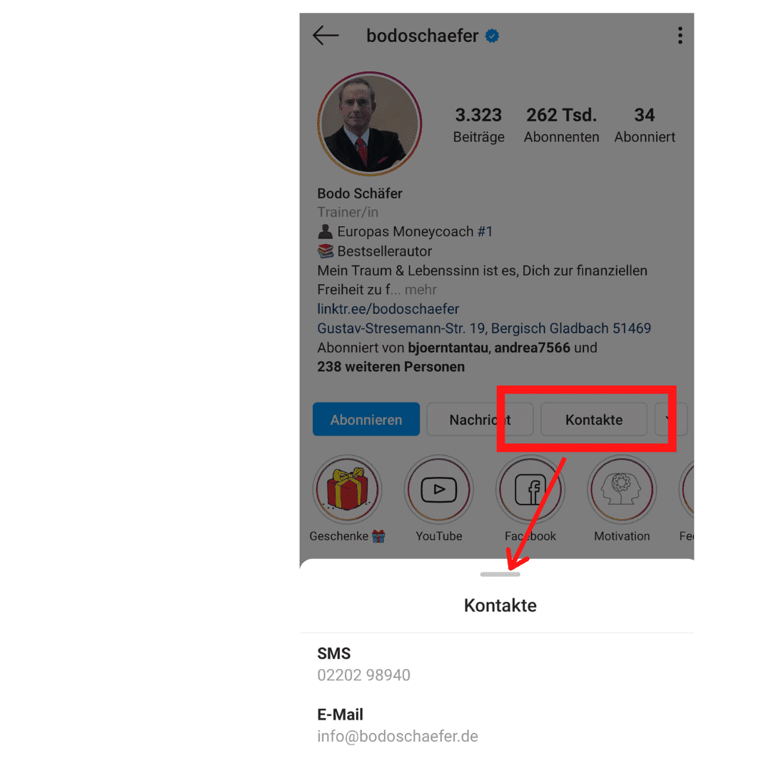 Instagram Aktion Button