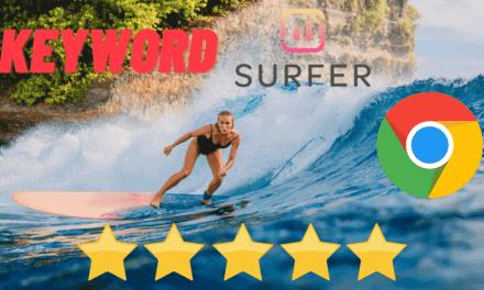 Keyword Surfer Chrome Extension – Die Beste Keywords Everywhere Alternative [SEO Tool]