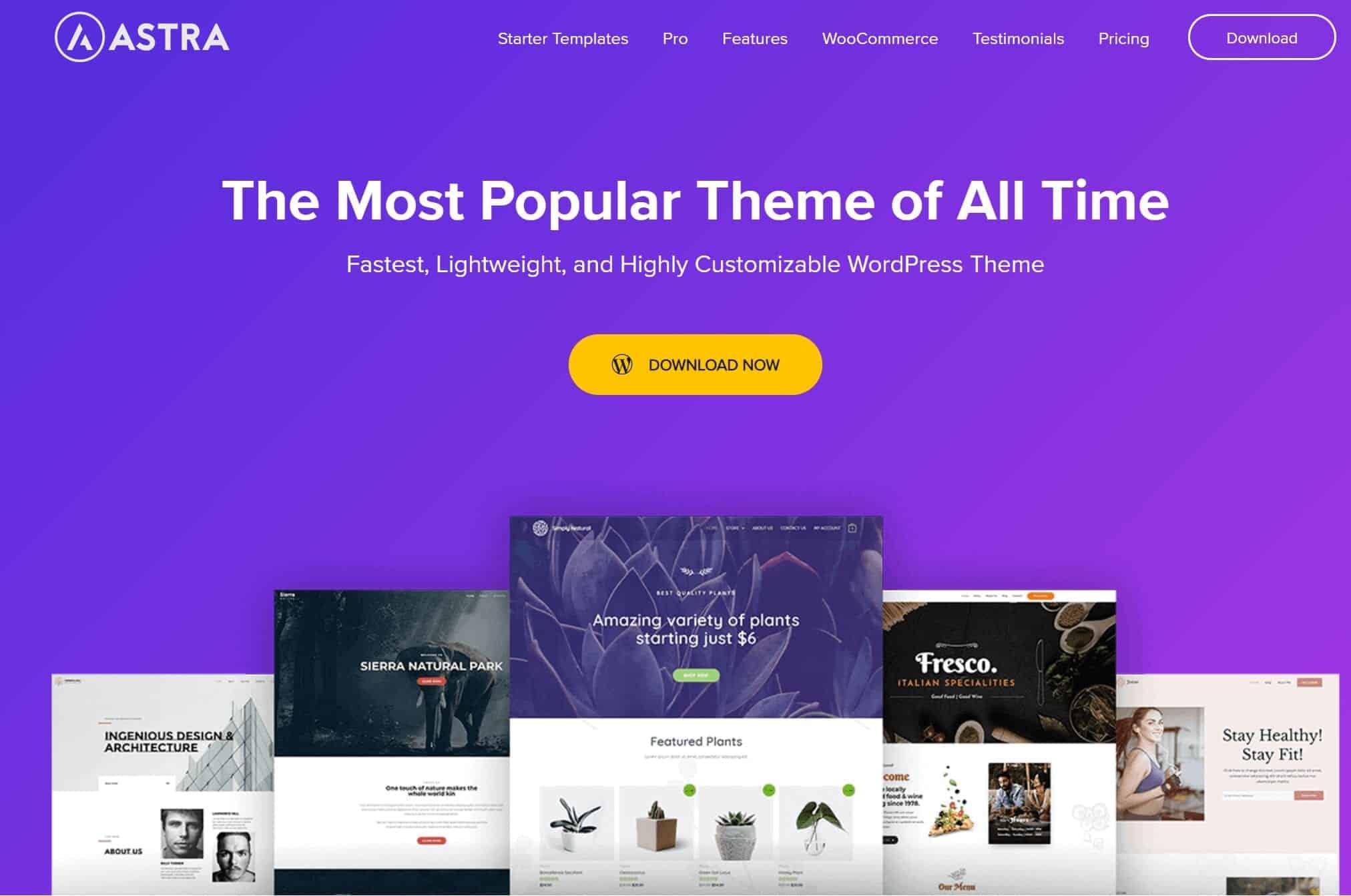 Astra-WordPress Theme
